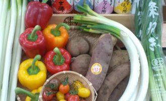 すず辰野菜
